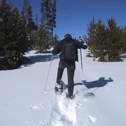 Ski- und Schlittenverleihe