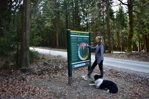 """Station 2: """"Flora und Fauna / Ein Jahr im Erzgebirge"""""""