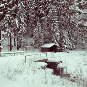 Hütte am Wettinbrunnen Winter Mit freundlicher Genehmigung Fotograf Harald