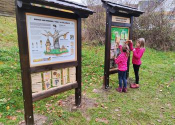 Tafel Bienen und Imkerei und Tafel Lebensraum Baum